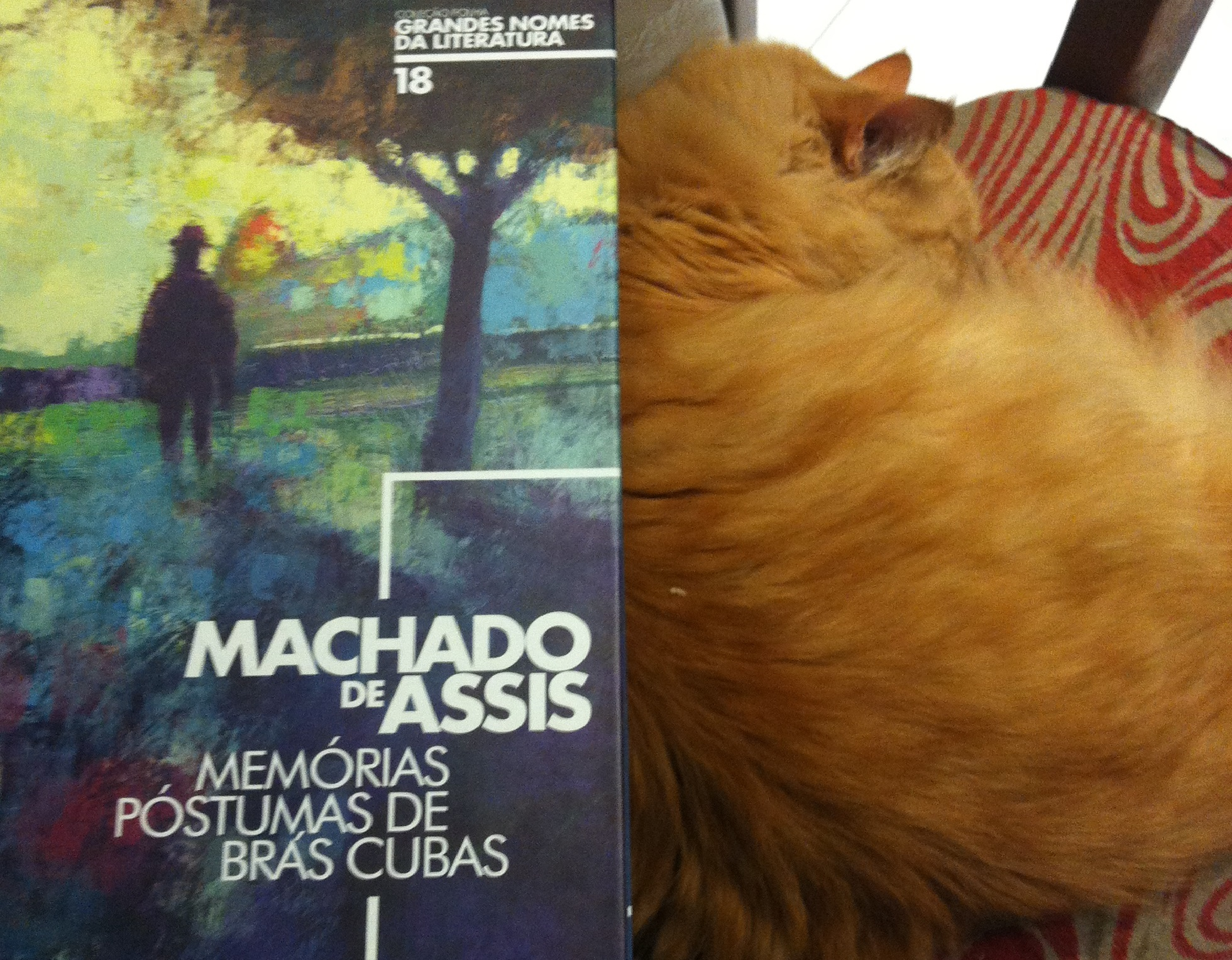 Machado de Assis, Woody Allen
