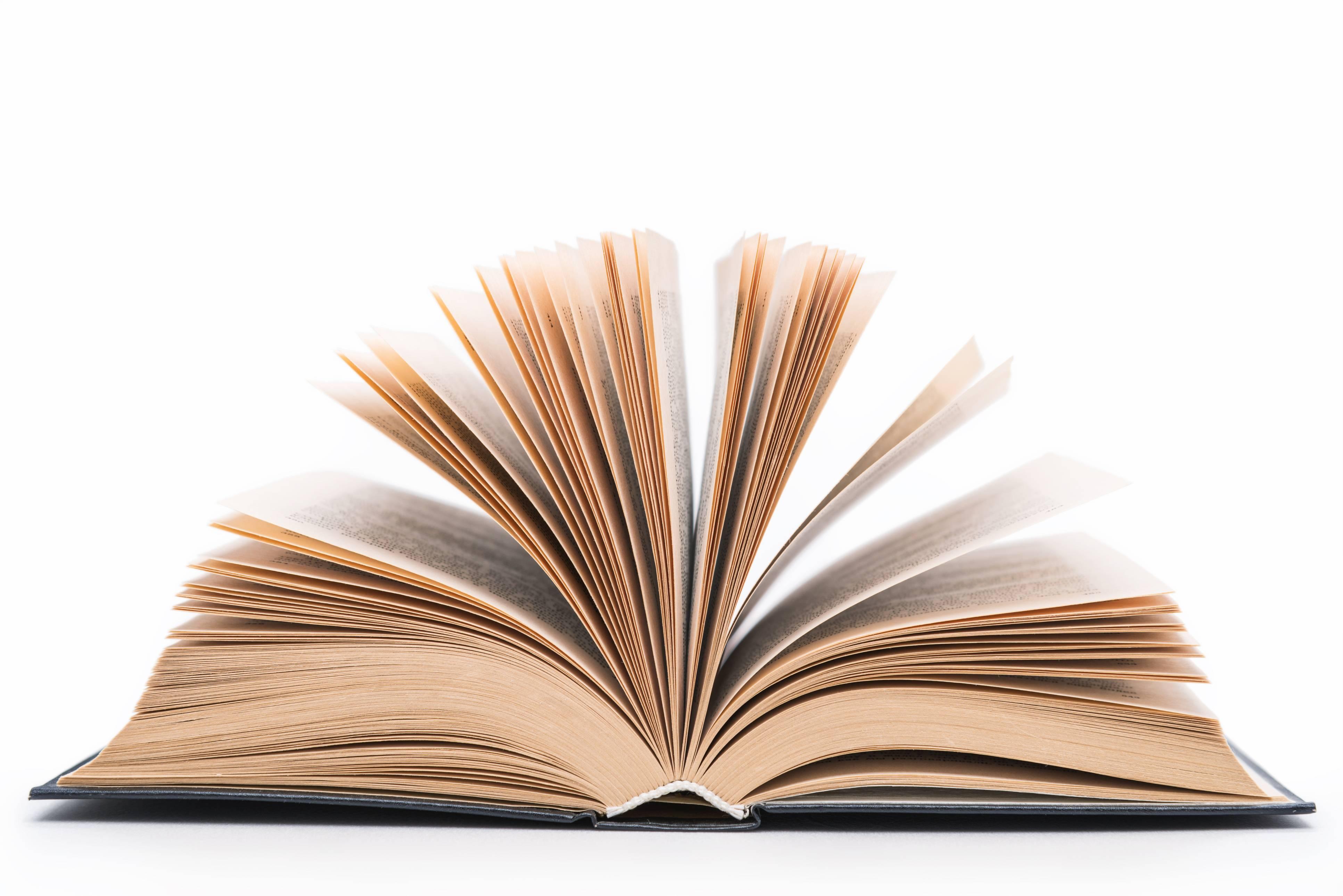 Novo livro – Rua Paraíba