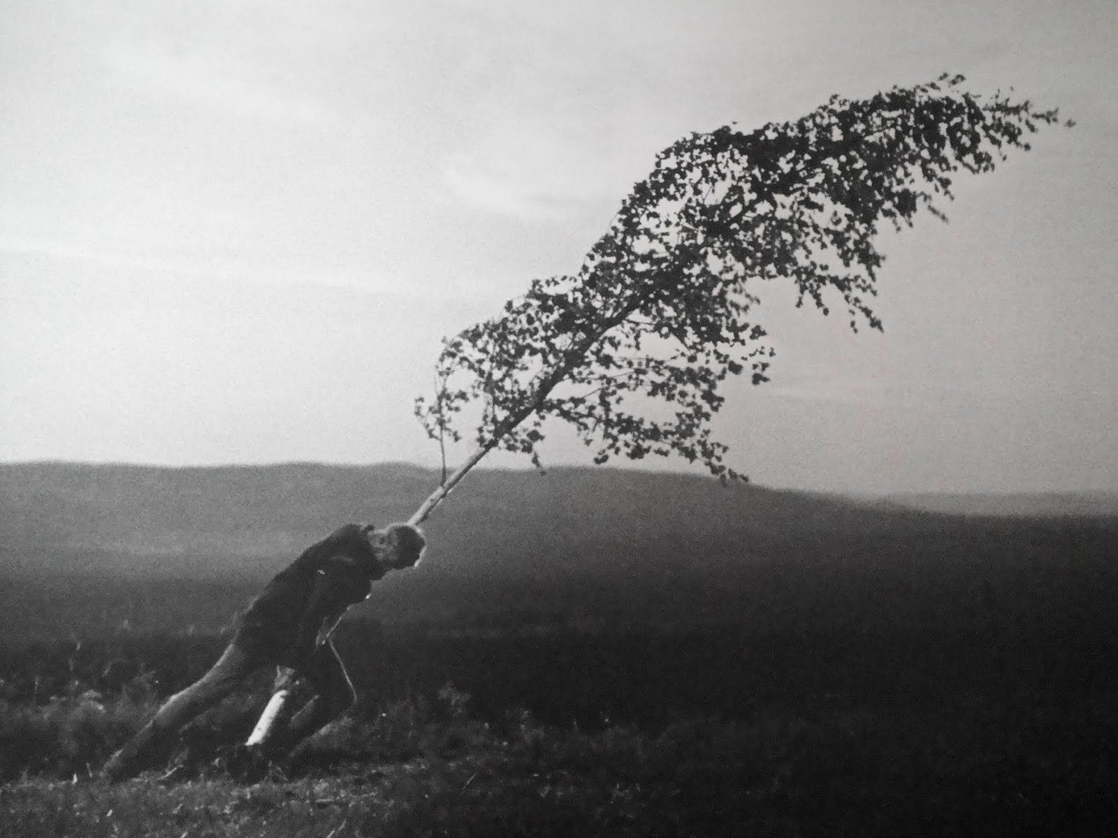 """A Fonte da Donzela"", de Ingmar Bergman"
